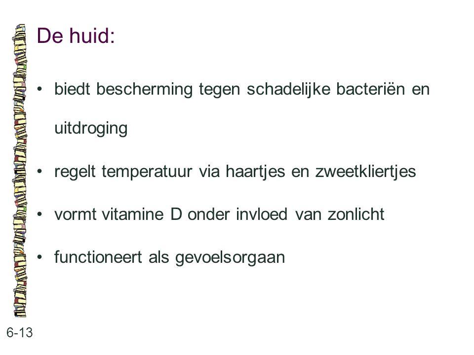 De huid: 6-13 biedt bescherming tegen schadelijke bacteriën en uitdroging regelt temperatuur via haartjes en zweetkliertjes vormt vitamine D onder inv