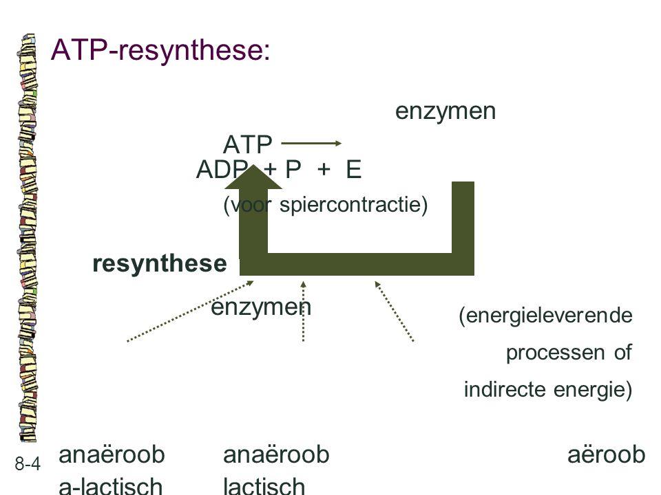 ATP-resynthese: 8-4 enzymen ATP ADP + P + E (voor spiercontractie) resynthese enzymen anaëroobanaëroobaëroob a-lactischlactisch (energieleverende proc