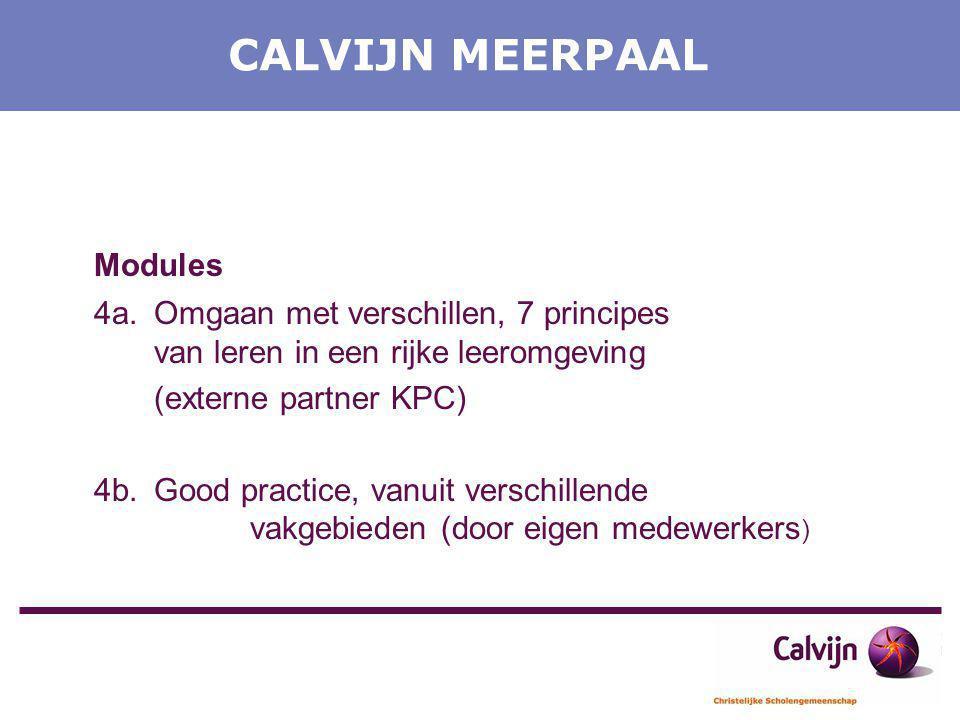 CALVIJN MEERPAAL Modules 4a.Omgaan met verschillen, 7 principes van leren in een rijke leeromgeving (externe partner KPC) 4b.Good practice, vanuit ver