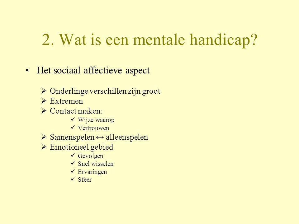 2. Wat is een mentale handicap? Het sociaal affectieve aspect  Onderlinge verschillen zijn groot  Extremen  Contact maken: Wijze waarop Vertrouwen