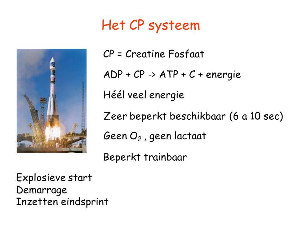 Het CP systeem CP = Creatine Fosfaat ADP + CP -> ATP + C + energie Héél veel energie Zeer beperkt beschikbaar (6 a 10 sec) Beperkt trainbaar Explosiev