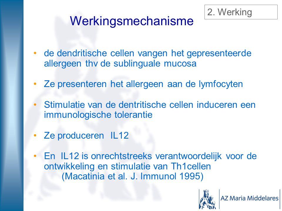 de dendritische cellen vangen het gepresenteerde allergeen thv de sublinguale mucosa Ze presenteren het allergeen aan de lymfocyten Stimulatie van de