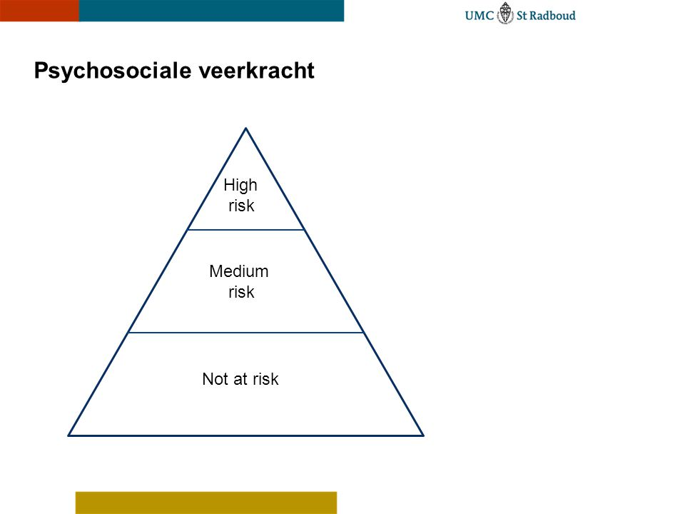 Psychosociale veerkracht Not at risk Medium risk High risk