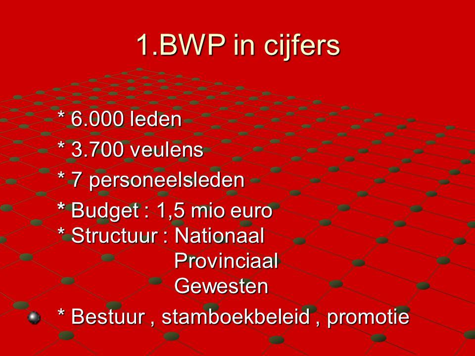 1.BWP in cijfers * 6.000 leden * 3.700 veulens * 7 personeelsleden * Budget : 1,5 mio euro * Structuur : Nationaal Provinciaal Gewesten * Bestuur, sta