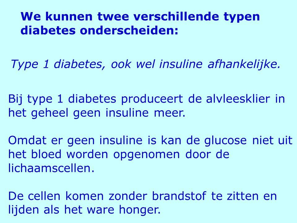 Type 1 diabetes, ook wel insuline afhankelijke. We kunnen twee verschillende typen diabetes onderscheiden: Bij type 1 diabetes produceert de alvleeskl