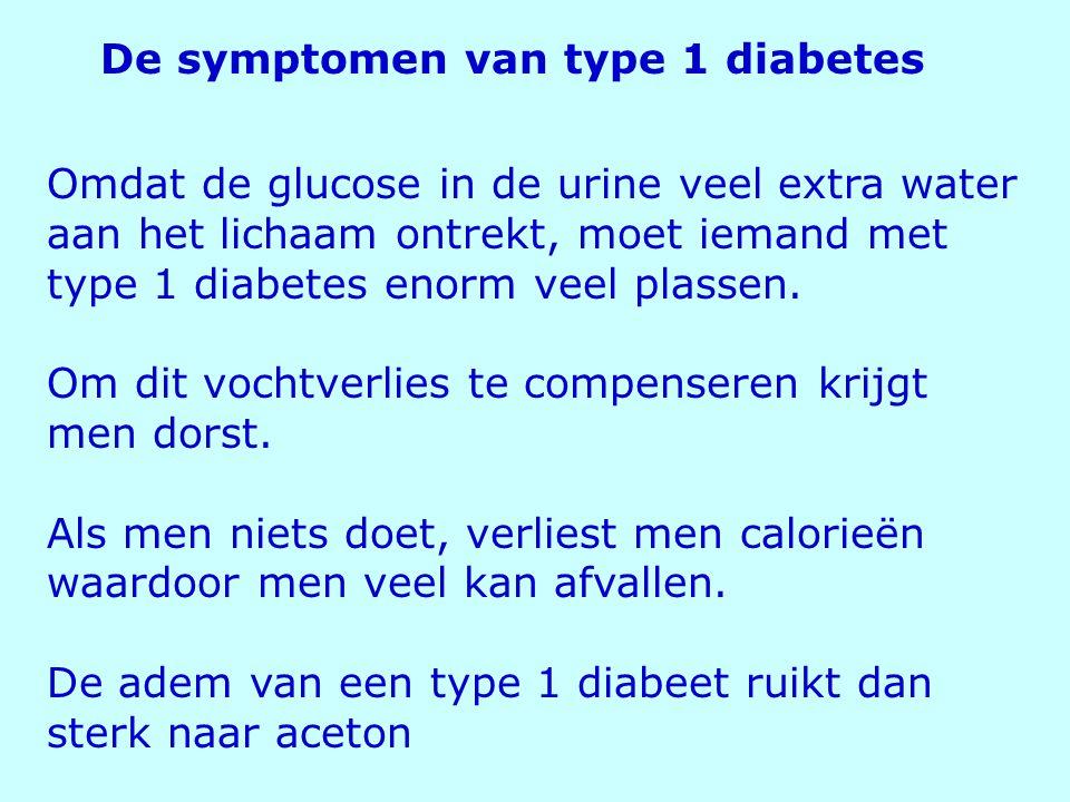Omdat de glucose in de urine veel extra water aan het lichaam ontrekt, moet iemand met type 1 diabetes enorm veel plassen. Om dit vochtverlies te comp