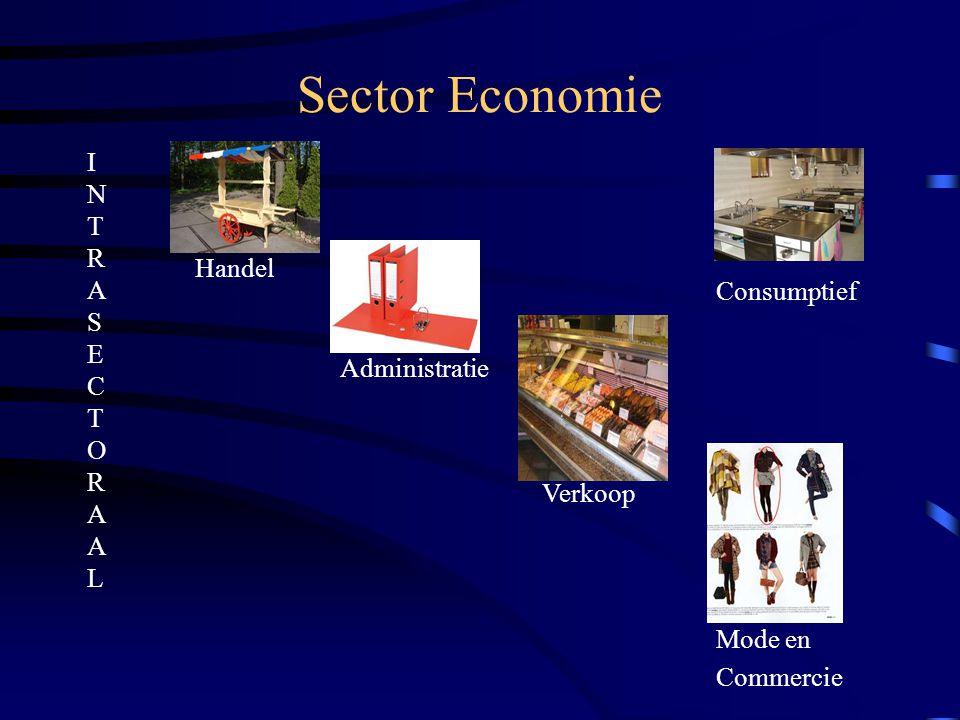 Sector Economie Handel Verkoop Administratie Mode en Commercie Consumptief INTRASECTORAALINTRASECTORAAL
