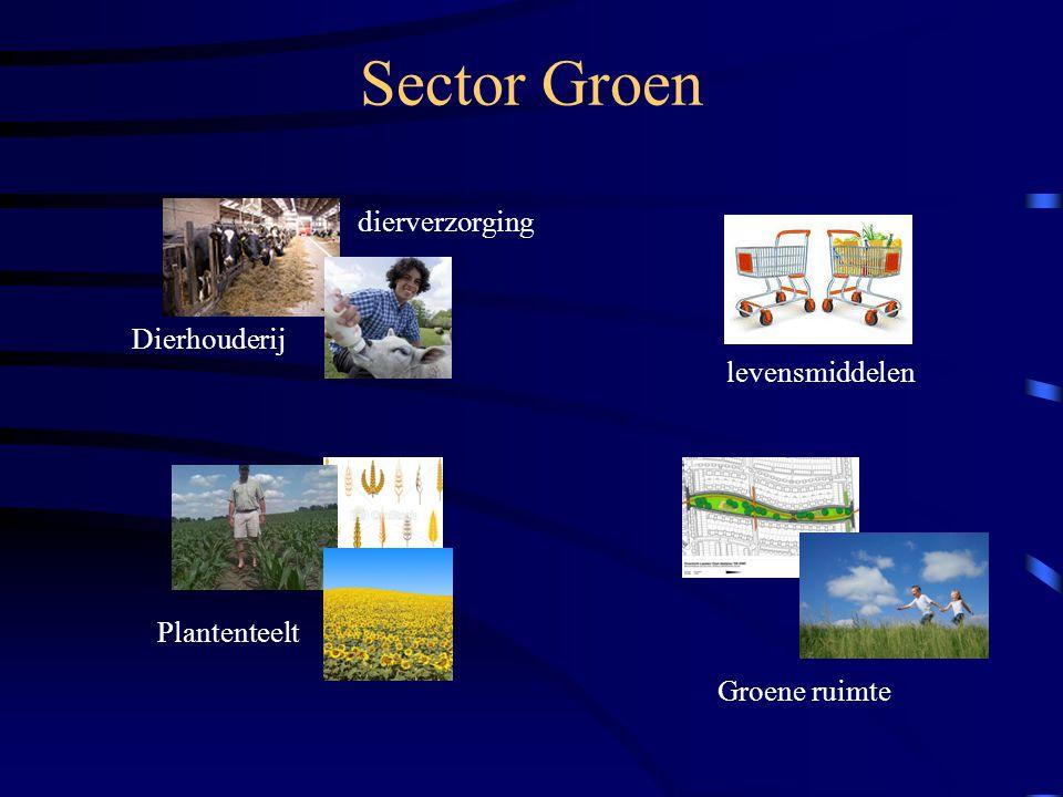 SDV Naast de 4 sectoren is er in Apeldoorn ook nog een andere richting mogelijk n.l.: SDV.