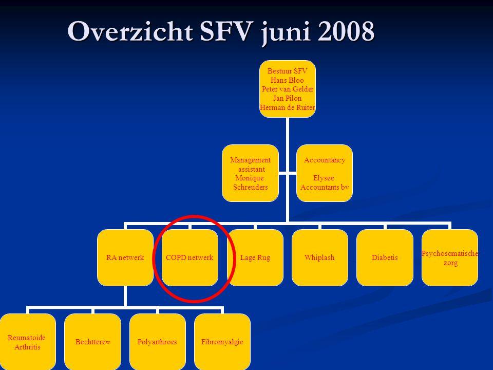 Overzicht SFV juni 2008 Bestuur SFV Hans Bloo Peter van Gelder Jan Pilon Herman de Ruiter RA netwerk Reumatoide Arthritis BechtterewPolyarthroesFibrom