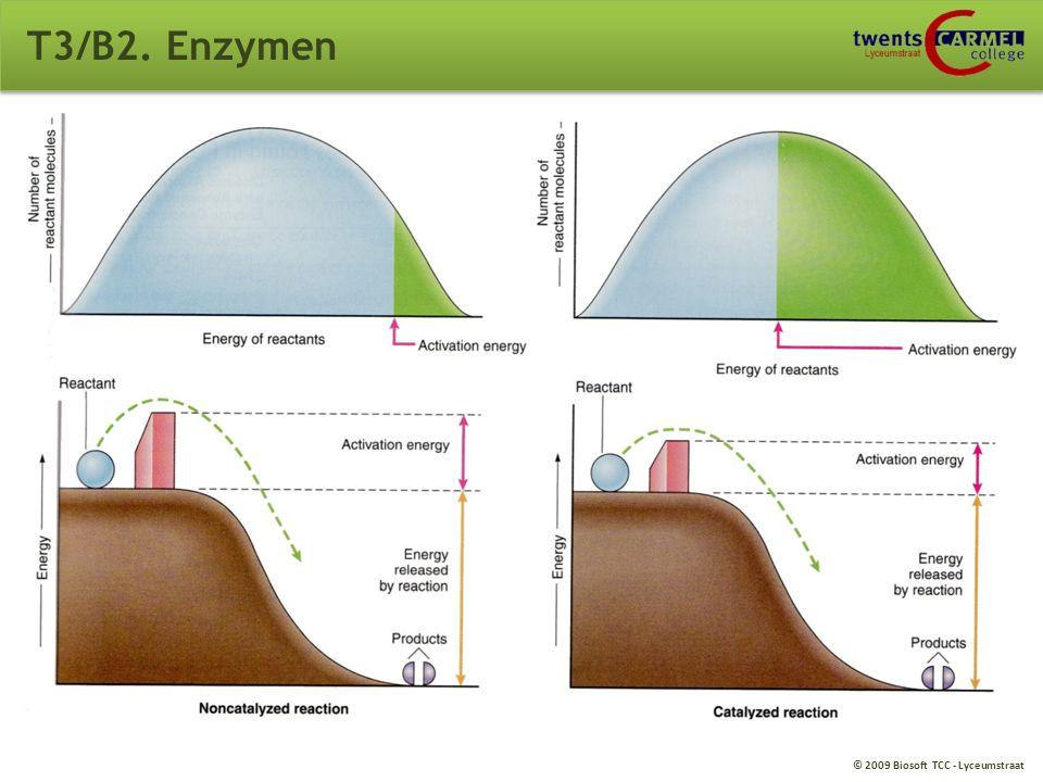© 2009 Biosoft TCC - Lyceumstraat T3/B2. Enzymen B2. Enzymen (eiwitten) Versnellen van reacties, hebben een lagere activeringsenergie waarbij de energ