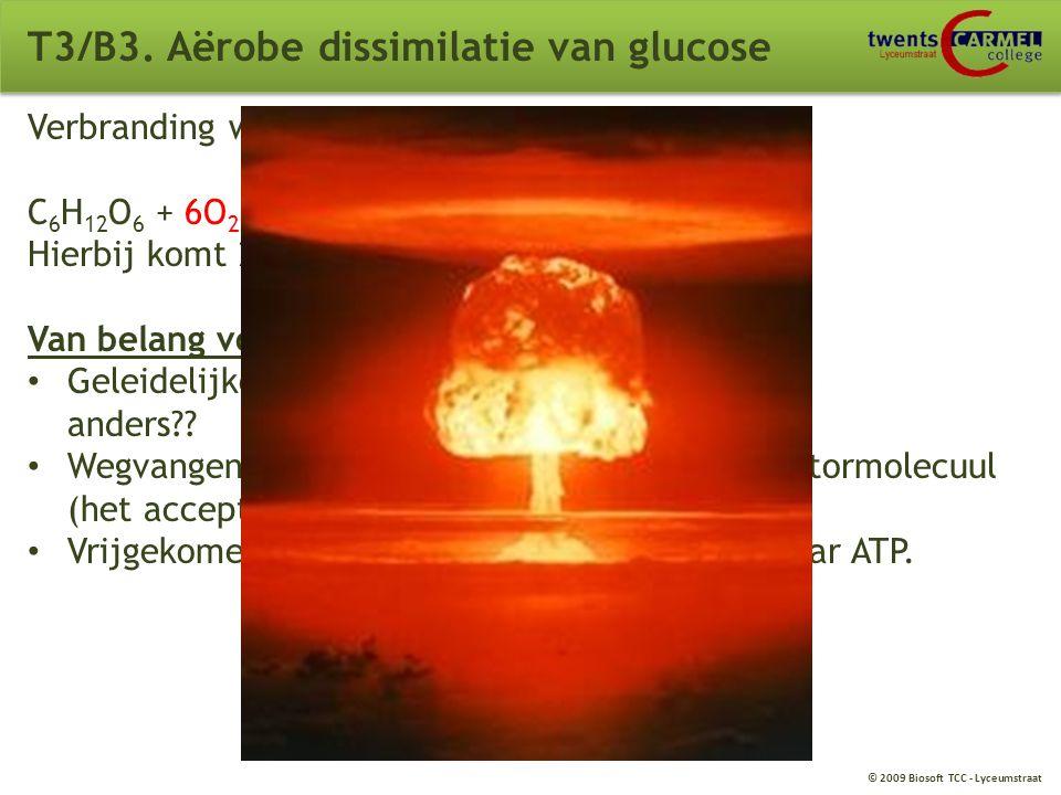 © 2009 Biosoft TCC - Lyceumstraat T3/B2. Enzymen Negatieve terugkoppeling Voldoende produkt? --> remming afbraak glucose