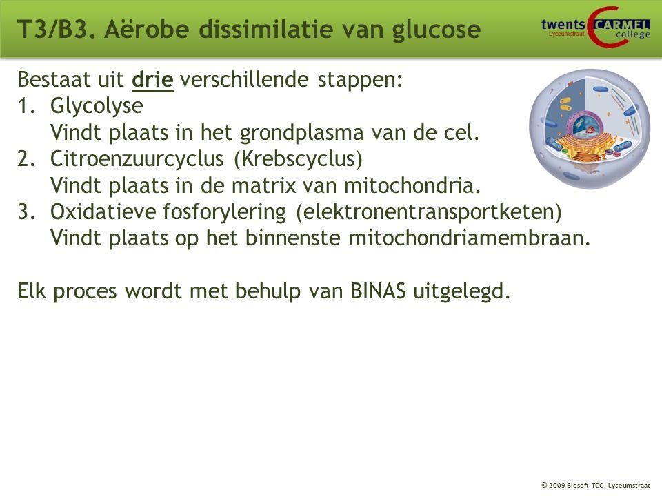 © 2009 Biosoft TCC - Lyceumstraat T3/B3. Aërobe dissimilatie van glucose Verbranding waarbij zuurstof aanwezig is. C 6 H 12 O 6 + 6O 2  6CO 2 + 6H 2