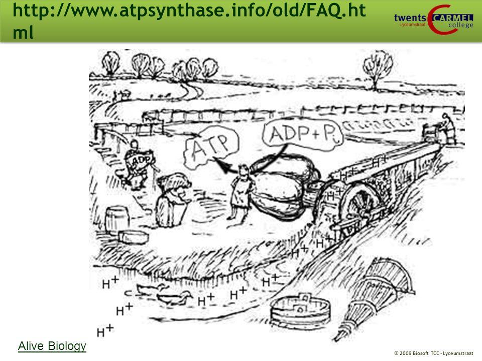 © 2009 Biosoft TCC - Lyceumstraat T3/B3. Oxidatieve fosforylering 68D