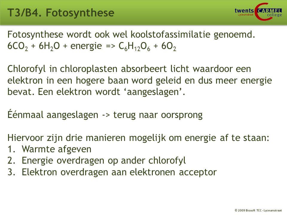 T3/B4. Fotosynthese Lichtenergie Opname van water (H 2 O) Bladgroenkorrels nemen de lichtenergie op Opname/afgifte van koolstofdioxide (CO 2 ) en zuur