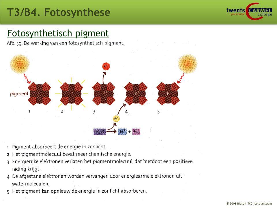 © 2009 Biosoft TCC - Lyceumstraat Fotosysteem 2 T3/B4. Fotosynthese