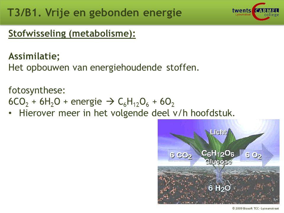 © 2009 Biosoft TCC - Lyceumstraat T3/B1. Vrije en gebonden energie Organische stoffen: (herhaling thema ordening) Grote moleculen Bevatten altijd kool