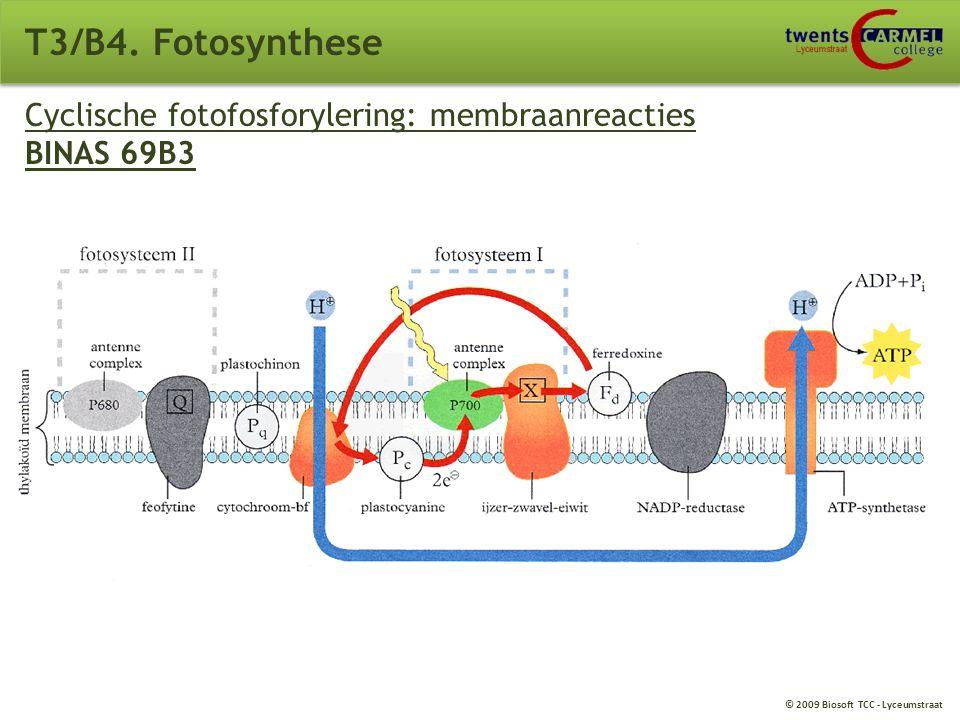 © 2009 Biosoft TCC - Lyceumstraat Niet-cyclische fotofosforylering: membraanreacties BINAS 69B2 T3/B4. Fotosynthese