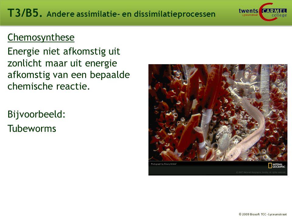 © 2009 Biosoft TCC - Lyceumstraat Overzicht BINAS 69A T3/B4. Fotosynthese