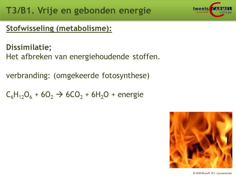 © 2009 Biosoft TCC - Lyceumstraat T3/B1. Vrije en gebonden energie Stofwisseling (metabolisme): Assimilatie; Het opbouwen van energiehoudende stoffen.