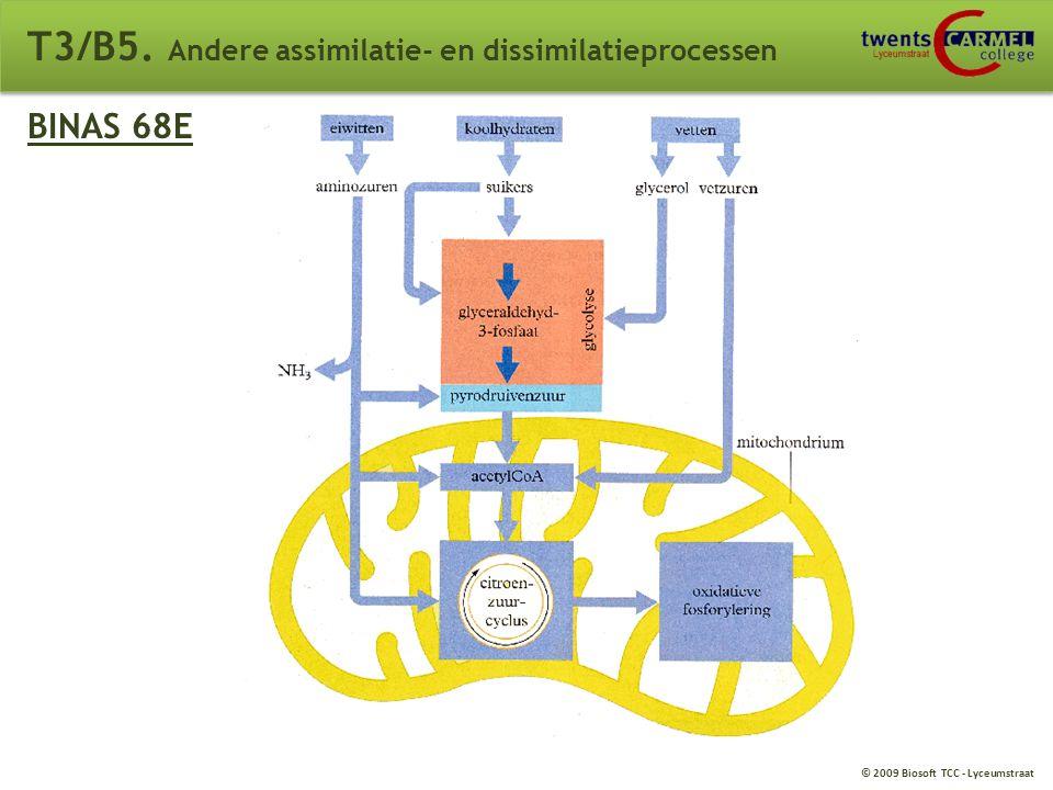 © 2009 Biosoft TCC - Lyceumstraat T3/B5. Andere assimilatie- en dissimilatieprocessen