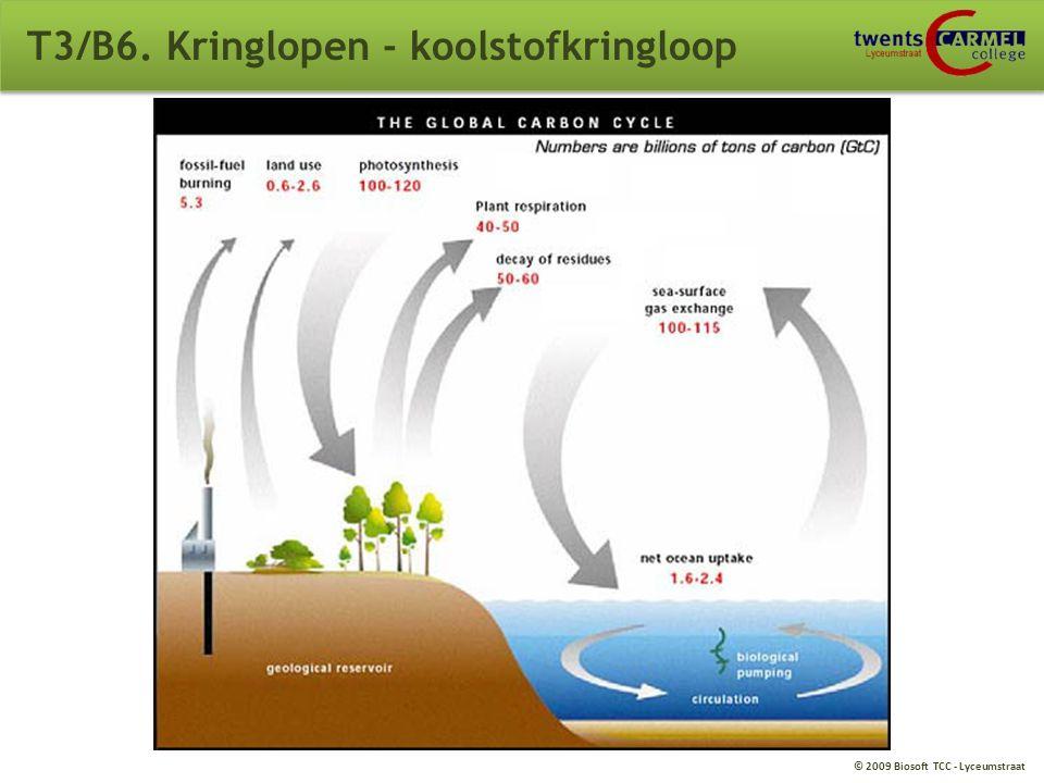 © 2009 Biosoft TCC - Lyceumstraat T3/B6. Kringlopen - koolstofkringloop