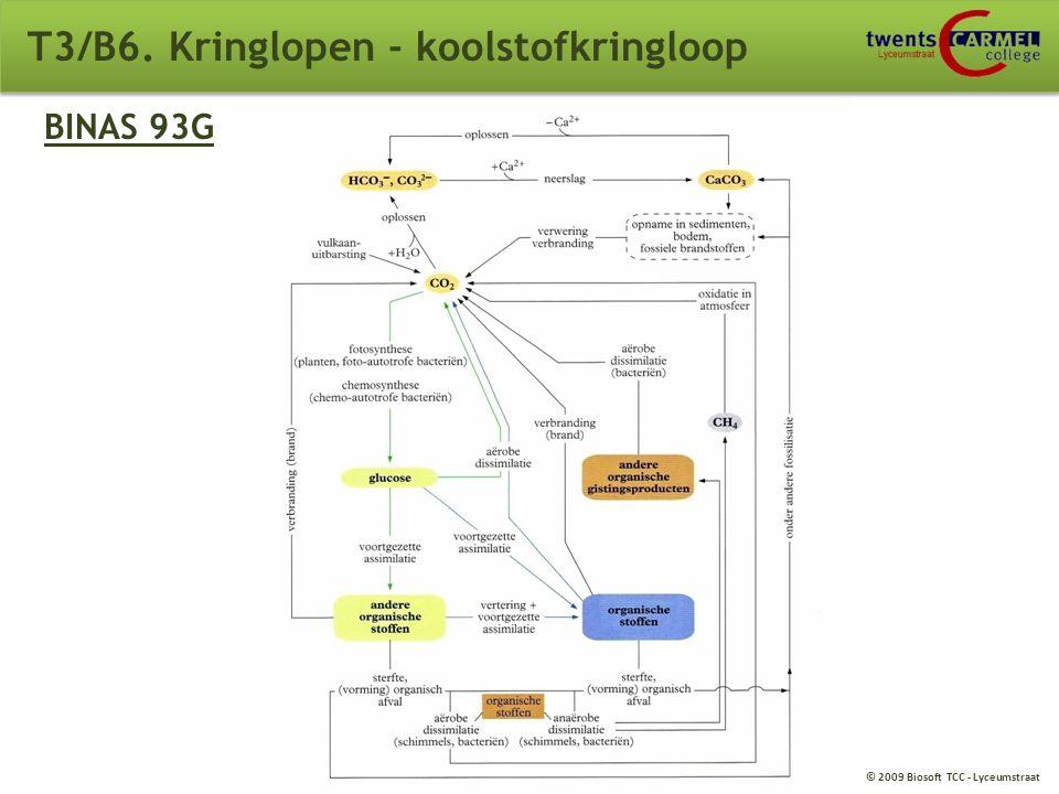 © 2009 Biosoft TCC - Lyceumstraat T3/B6. Kringlopen - koolstofkringloop glucose andere organische stoffen producenten voortgezette assimilatie consume