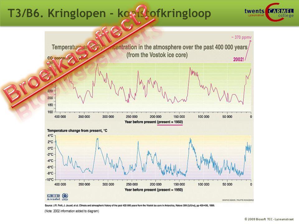 © 2009 Biosoft TCC - Lyceumstraat T3/B6. Kringlopen - koolstofkringloop BINAS 93G