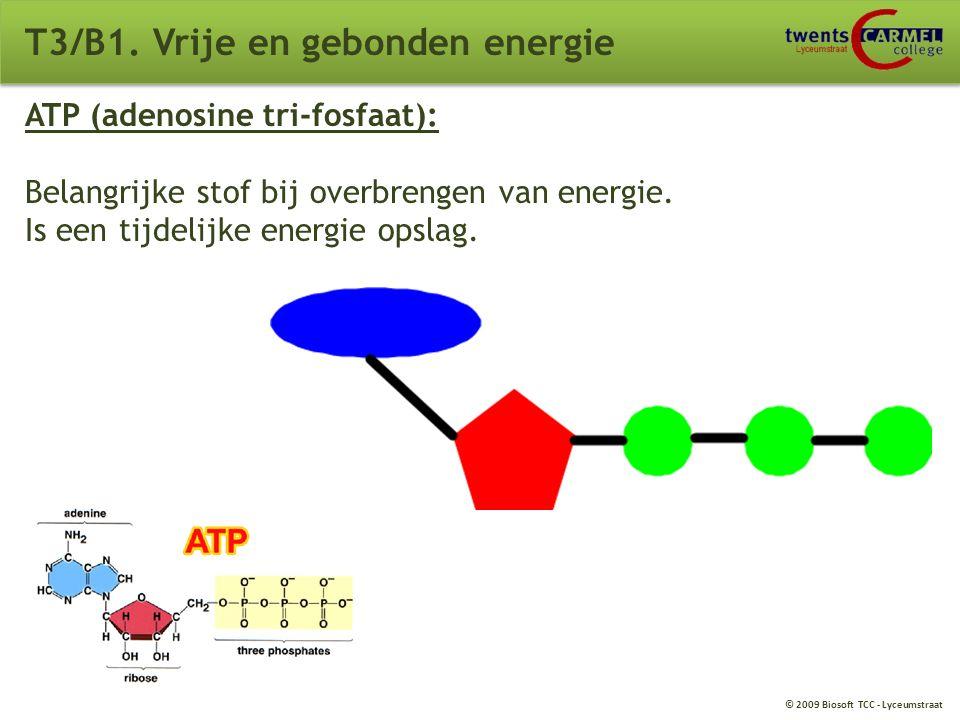 © 2009 Biosoft TCC - Lyceumstraat T3/B1. Vrije en gebonden energie Stofwisseling (metabolisme): Dissimilatie; Het afbreken van energiehoudende stoffen