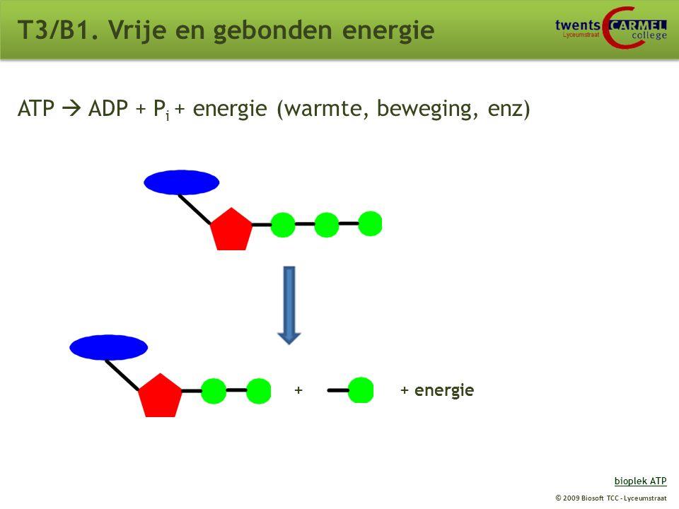 © 2009 Biosoft TCC - Lyceumstraat T3/B1. Vrije en gebonden energie ATP (adenosine tri-fosfaat): Belangrijke stof bij overbrengen van energie. Is een t