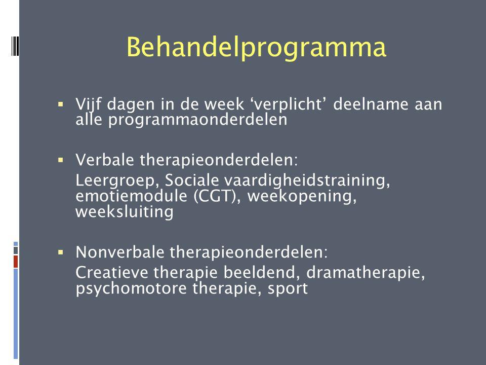 Behandelprogramma  Vijf dagen in de week 'verplicht' deelname aan alle programmaonderdelen  Verbale therapieonderdelen: Leergroep, Sociale vaardighe