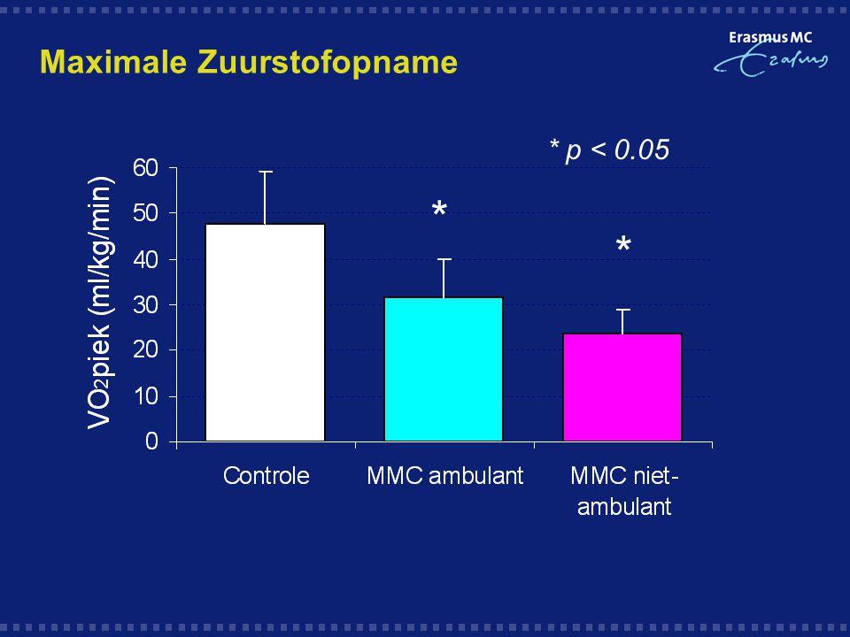 Maximale Zuurstofopname * * * p < 0.05