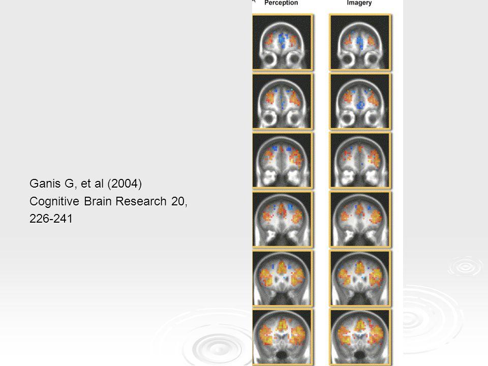 Soorten visualisatie Beeld (sensory imagery): mentale representatie van zintuiglijke voorstellingen Bij: - Pijn - Operatie - Chemotherapie Beweging (motor imagery): mentale representatie van beweging Bij: - Revalidatie: CVA, sportblessure, fractuur - (Top-)sport
