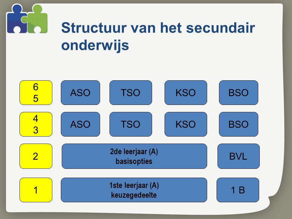 Structuur van het secundair onderwijs ASOTSOKSOBSO 4343 2de leerjaar (A) basisopties 2BVL 1ste leerjaar (A) keuzegedeelte 11 B 6565 ASOTSOKSOBSO