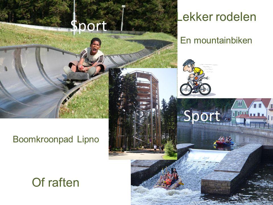 Sport Lekker rodelen Of raften Boomkroonpad Lipno En mountainbiken