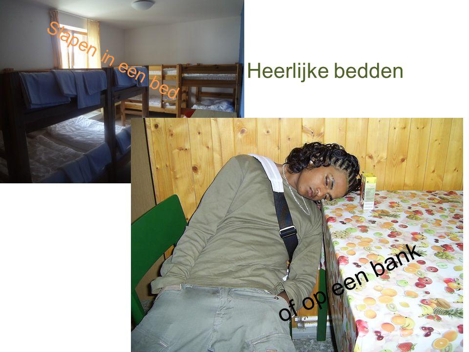 Slapen in een bed of op een bank Heerlijke bedden