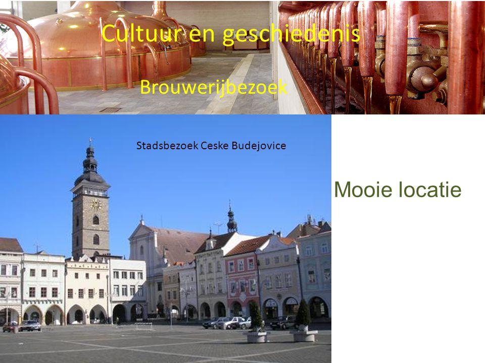 Cultuur en geschiedenis Brouwerijbezoek Stadsbezoek Ceske Budejovice Mooie locatie