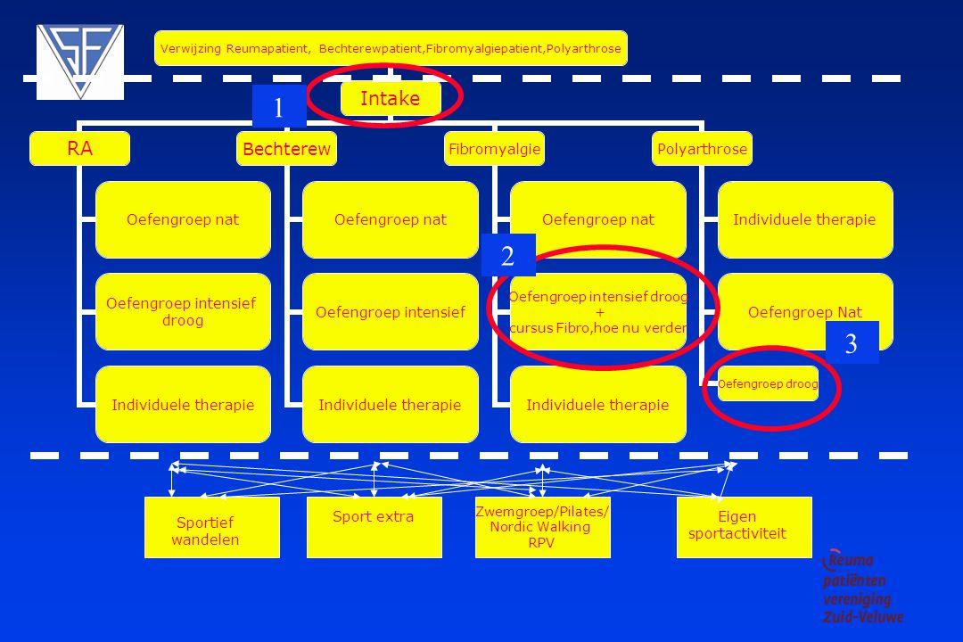 2008/2009 Overzicht Reumanetwerk Zuid-Veluwe deel Fysiotherapie in Veenendaal, Ede, Bennekom en Wageningen Hans Bloo Hans Bloo