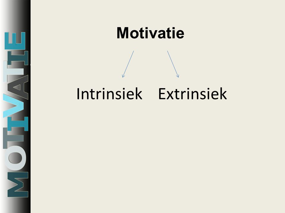Intrinsiek Extrinsiek Motivatie