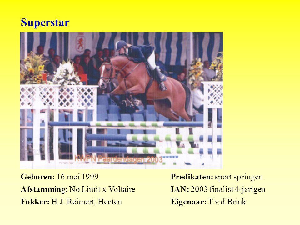 Superstar Geboren: 16 mei 1999Predikaten: sport springen Afstamming: No Limit x VoltaireIAN: 2003 finalist 4-jarigen Fokker: H.J.