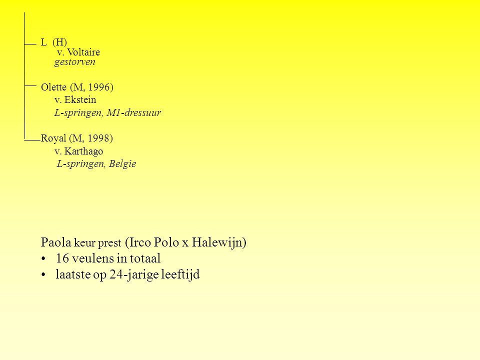 L (H) v. Voltaire gestorven Olette (M, 1996) v. Ekstein L-springen, M1-dressuur Royal (M, 1998) v.