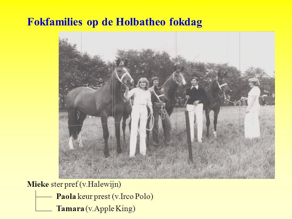 Fokfamilies op de Holbatheo fokdag Mieke ster pref (v.Halewijn) Paola keur prest (v.Irco Polo) Tamara (v.Apple King)