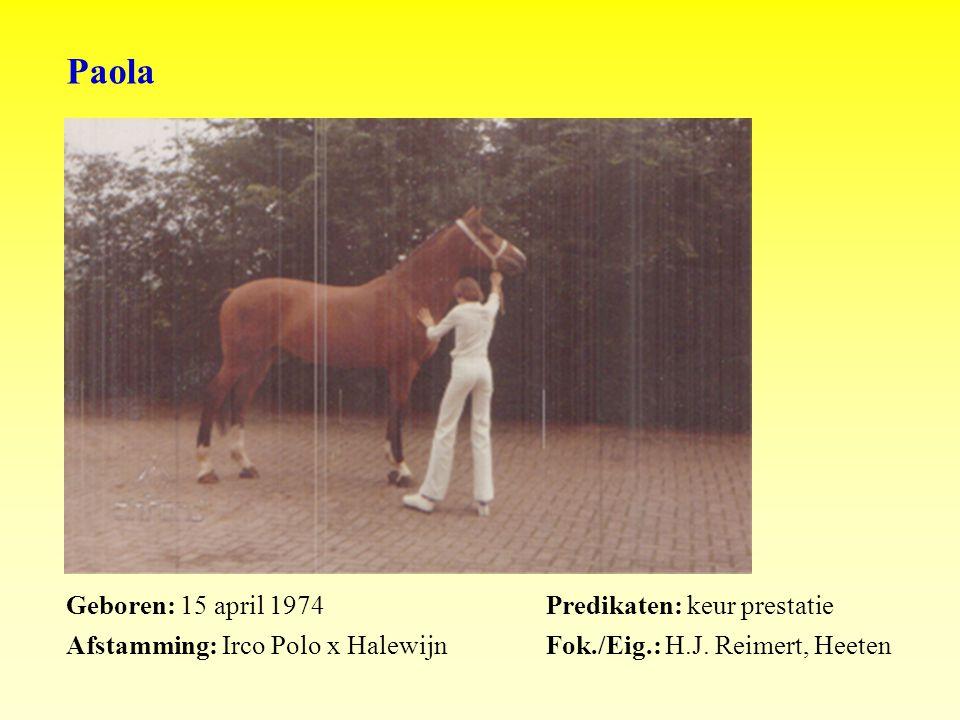 Paola Geboren: 15 april 1974Predikaten: keur prestatie Afstamming: Irco Polo x HalewijnFok./Eig.: H.J.