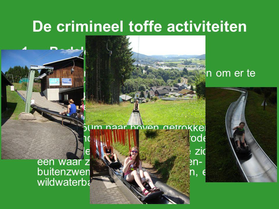 De crimineel toffe activiteiten 1.Rodelen en zwemmen We gaan met de trein naar Willingen om er te rodelen en zwemmen. Iedereen krijgt de kans om drie
