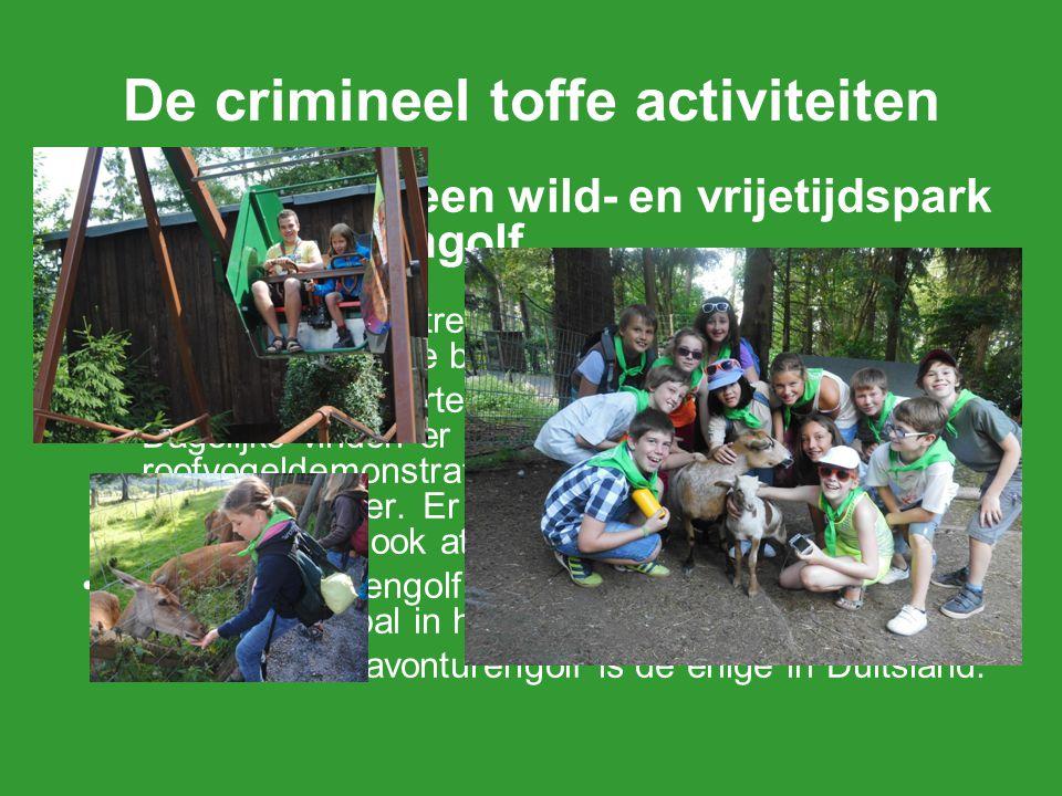 2.Bezoek aan een wild- en vrijetijdspark en avonturengolf We gaan met de trein naar Willingen om er een wild- en vrijetijdspark te bezoeken en te mini