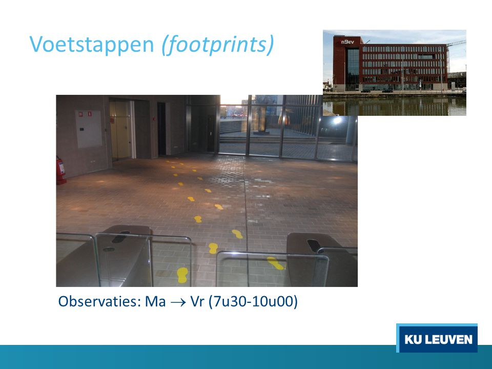 Voetstappen (footprints) Observaties: Ma  Vr (7u30-10u00)