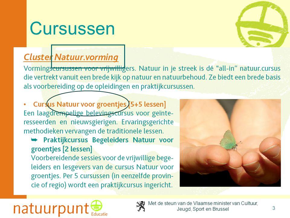 Met de steun van de Vlaamse minister van Cultuur, Jeugd, Sport en Brussel 3 Cursussen