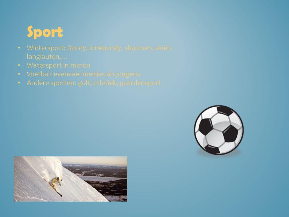 Sport Wintersport: Bandy, innebandy, shaatsen, skiën, langlaufen,… Watersport in meren Voetbal: evenveel meisjes als jongens Andere sporten: golf, atl