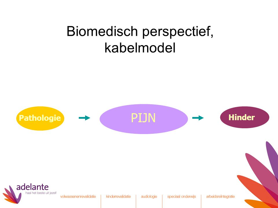 Biomedisch perspectief: kabelmodel SOMATISCH PSYCHISCH DUALISME