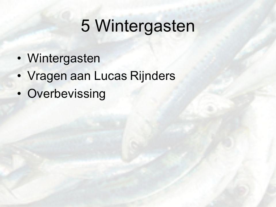 5 Wintergasten Wintergasten Vragen aan Lucas Rijnders Overbevissing