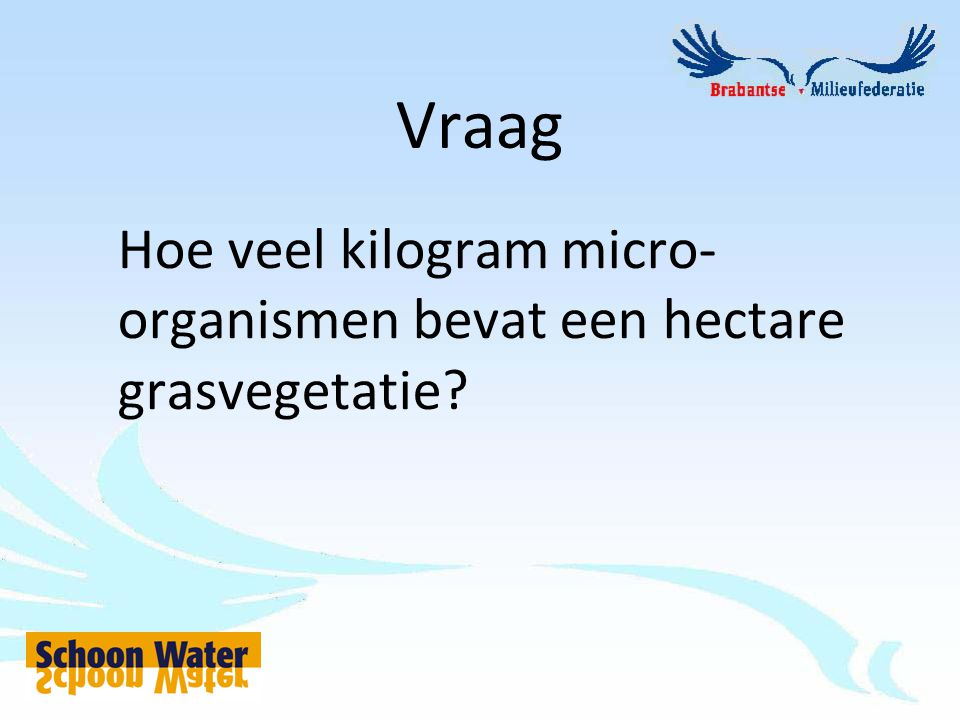 Vraag Hoe veel kilogram micro- organismen bevat een hectare grasvegetatie?